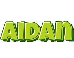 Aidan summer logo