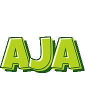 Aja summer logo