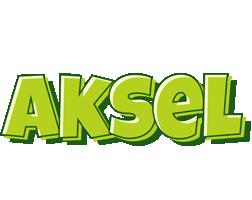 Aksel summer logo