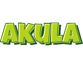 Akula summer logo