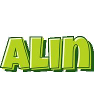 Alin summer logo
