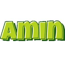 Amin summer logo