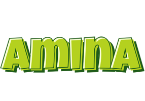 Amina summer logo