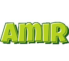 Amir summer logo