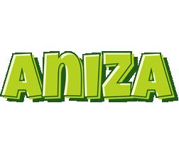 Aniza summer logo