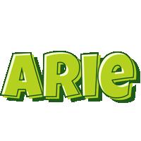 Arie summer logo