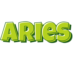 Aries summer logo
