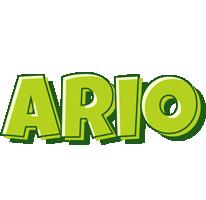 Ario summer logo