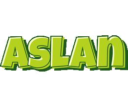 Aslan summer logo