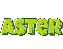 Aster summer logo