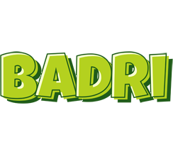 Badri summer logo