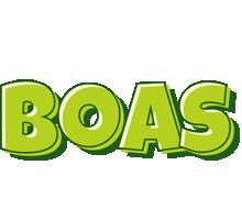 Boas summer logo