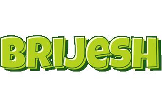 Brijesh summer logo