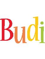 Budi birthday logo