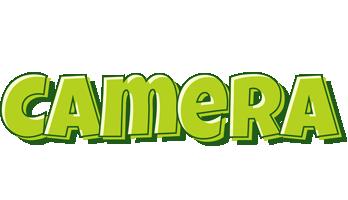 Camera summer logo