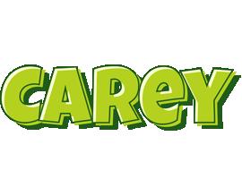Carey summer logo