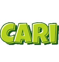 Cari summer logo