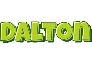 Dalton summer logo
