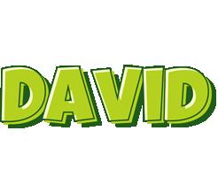 David summer logo