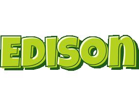 Edison summer logo