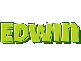 Edwin summer logo
