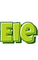 Eie summer logo