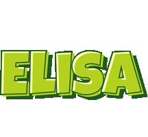 Elisa summer logo