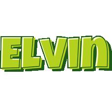 Elvin summer logo