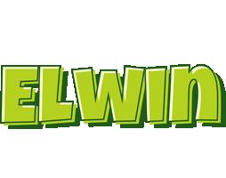 Elwin summer logo