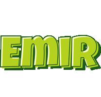 Emir summer logo
