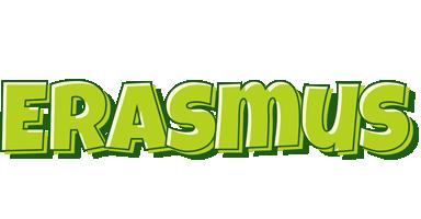 Erasmus summer logo