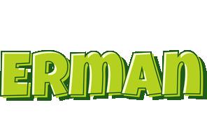 Erman summer logo