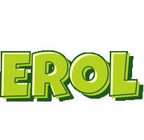 Erol summer logo