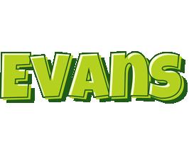 Evans summer logo