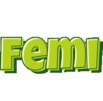 Femi summer logo