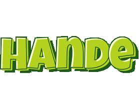 Hande summer logo