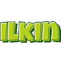 Ilkin summer logo