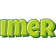 Imer summer logo