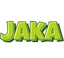Jaka summer logo