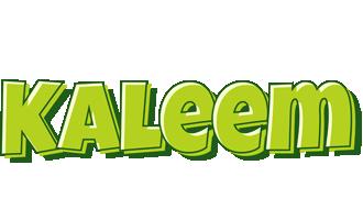Kaleem summer logo