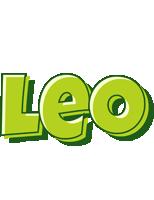 Leo summer logo
