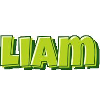 Liam summer logo