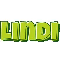 Lindi summer logo