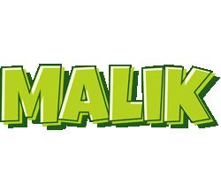 Malik summer logo