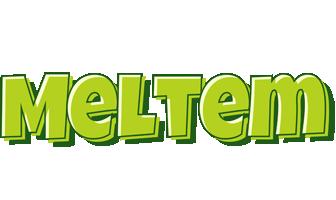 Meltem summer logo
