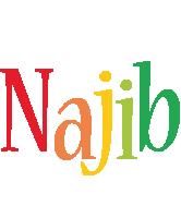 Najib birthday logo