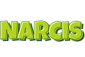 Narcis summer logo
