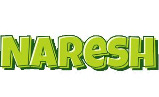 Naresh summer logo