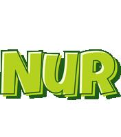 Nur summer logo