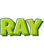 Ray summer logo